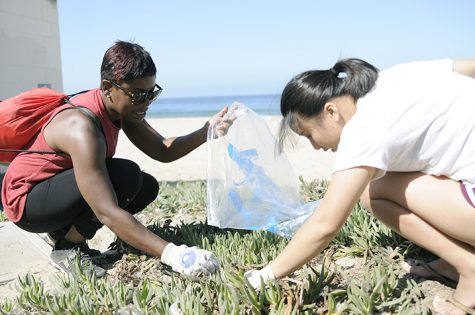 Coming together for a cleaner coast