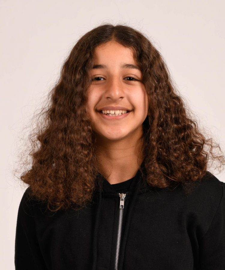 Sarah Falahahwazi