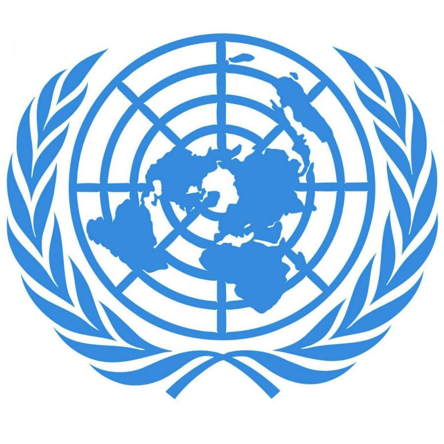 Model United Nations delegates adapt to online conferences