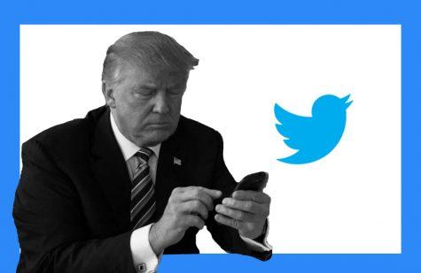 Twitter takes flight